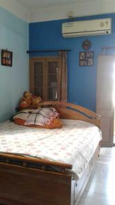 Gallery Cover Image of 900 Sq.ft 2 BHK Independent Floor for rent in Gariahat for 15000
