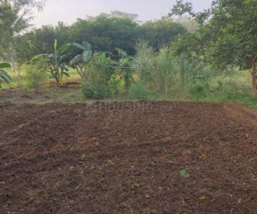 Gallery Cover Image of  Sq.ft Residential Plot for buy in Uran for 1500000