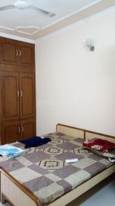 Bedroom Image of 3 Bhk Fully Furnished Floor In Sector 14 in Sector 14
