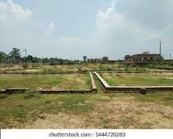 1000 Sq.ft Residential Plot for Sale in Sector 55, Gurgaon