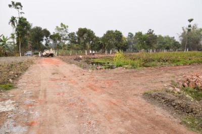 720 Sq.ft Residential Plot for Sale in Shyamnagar, North 24 Parganas