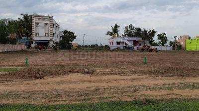 Gallery Cover Image of  Sq.ft Residential Plot for buy in Veppampattu for 1000000
