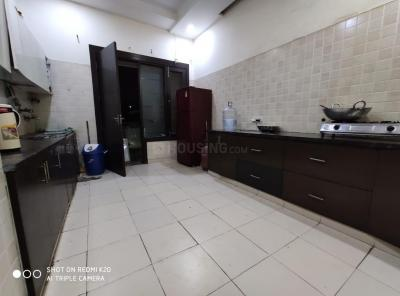 Kitchen Image of Nandani PG in Sector 15