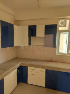 Gallery Cover Image of 1718 Sq.ft 3 BHK Apartment for rent in Supertech Eco Village 1, Noida Extension for 9000