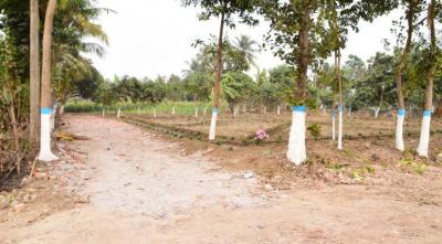 Gallery Cover Image of  Sq.ft Residential Plot for buy in Barrackpore for 1000000