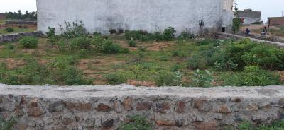 Gallery Cover Image of  Sq.ft Residential Plot for buy in Shashtri Nagar for 550000