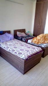 Bedroom Image of Shree Shyam PG in DLF Phase 1