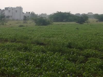 Gallery Cover Image of  Sq.ft Residential Plot for buy in Annur for 24000000