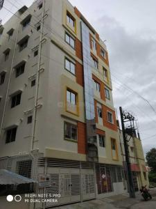 Gallery Cover Image of 650 Sq.ft 1 BHK Apartment for rent in Gottigere for 10000