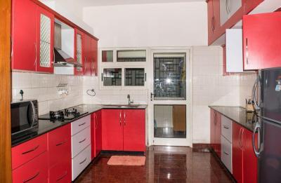 Kitchen Image of PG 4643257 Marathahalli in Marathahalli