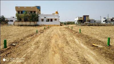 Gallery Cover Image of  Sq.ft Residential Plot for buy in Veppampattu for 1116000