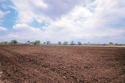 1029 Sq.ft Residential Plot for Sale in Neelbad, Bhopal