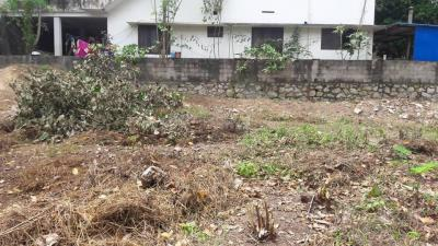 Gallery Cover Image of  Sq.ft Residential Plot for buy in Manacaud for 3800000