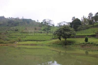 9845 Sq.ft Residential Plot for Sale in Coonoor, Nilgiris