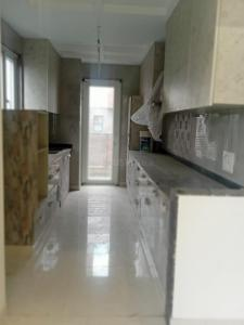 Gallery Cover Image of 1300 Sq.ft 3 BHK Independent Floor for rent in Shalimar Bagh for 45000