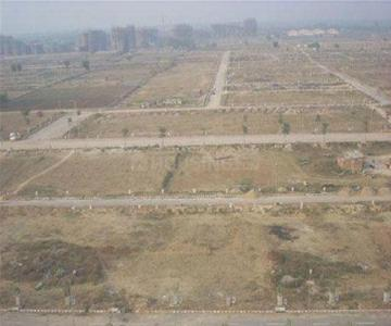 Gallery Cover Image of  Sq.ft Residential Plot for buy in Sector 75 for 6500000