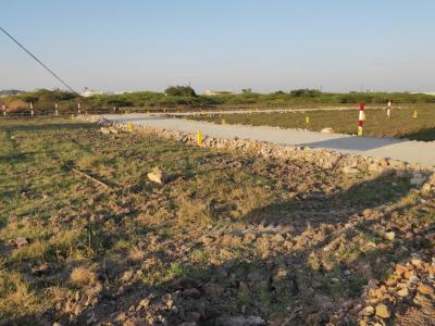 1000 Sq.ft Residential Plot for Sale in Nanmangalam, Chennai