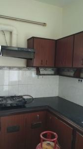 Kitchen Image of Sai Mathura Homes PG in Velachery