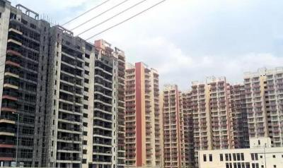 Gallery Cover Image of 1284 Sq.ft 3 BHK Apartment for rent in KLJ Platinum Heights, Sector 77 for 11000