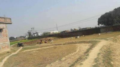 Gallery Cover Image of  Sq.ft Residential Plot for buy in Jagatpura for 9600000