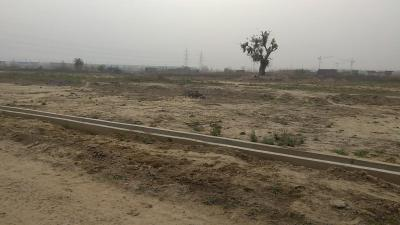 Gallery Cover Image of  Sq.ft Residential Plot for buy in Ballabhgarh for 1000000