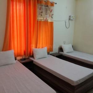 Bedroom Image of Navneet PG in Sector 46