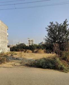 263 Sq.ft Residential Plot for Sale in Sector 51, Gurgaon