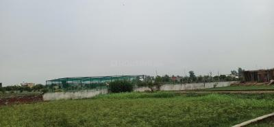 900 Sq.ft Residential Plot for Sale in Chhapraula, Ghaziabad
