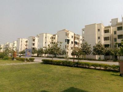 Gallery Cover Image of 670 Sq.ft 2 BHK Apartment for rent in Tata New Haven, Boisar for 4500