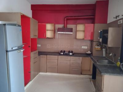 Gallery Cover Image of 1600 Sq.ft 3 BHK Independent House for rent in Sector 41 for 27000
