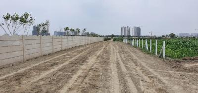 901 Sq.ft Residential Plot for Sale in Sector 81, Noida