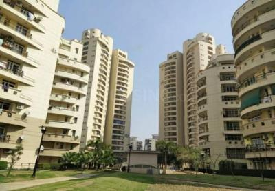 Gallery Cover Image of 3250 Sq.ft 4 BHK Apartment for rent in Sector 93A for 40000