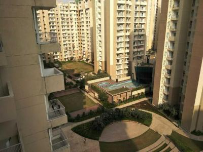Gallery Cover Image of 1040 Sq.ft 2 BHK Apartment for rent in Sector 137 for 13000