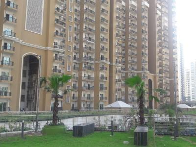 Gallery Cover Image of 860 Sq.ft 2 BHK Apartment for rent in Noida Extension for 9000