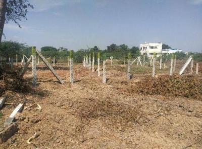 3216 Sq.ft Residential Plot for Sale in Somarasempettai, Tiruchirappalli
