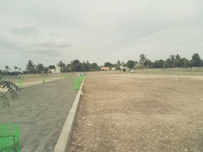 Gallery Cover Image of  Sq.ft Residential Plot for buy in Avadi for 1397500