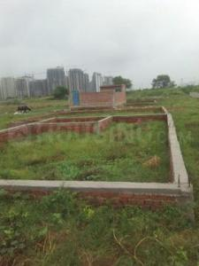Gallery Cover Image of  Sq.ft Residential Plot for buy in Sector 46 for 78146340