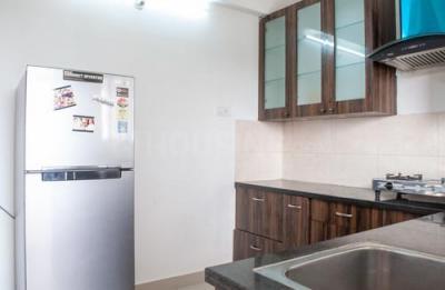 Kitchen Image of 2 Bhk In Accurate in Narsingi