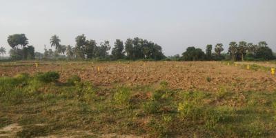1503 Sq.ft Residential Plot for Sale in Bhogapuram, Visakhapatnam