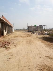 540 Sq.ft Residential Plot for Sale in Kosi Kalan, Mathura