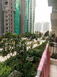 Gallery Cover Image of 976 Sq.ft 2 BHK Apartment for rent in Noida Extension for 8000