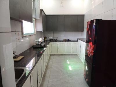 Kitchen Image of Angel Lane in Malka Ganj