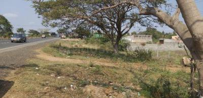 Gallery Cover Image of  Sq.ft Residential Plot for buy in Chengalpattu for 8400000