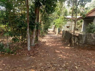 Gallery Cover Image of  Sq.ft Residential Plot for buy in Thrippunithura for 4000000