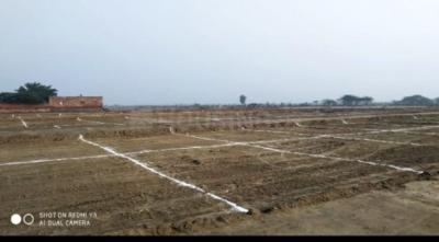 450 Sq.ft Residential Plot for Sale in Sector 17, Gurgaon