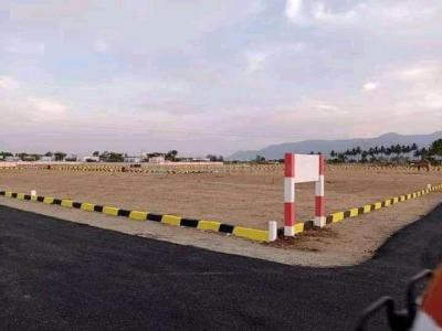 1200 Sq.ft Residential Plot for Sale in Chettinayakanpatti, Dindigul