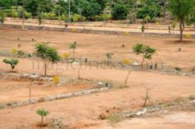 Gallery Cover Image of  Sq.ft Residential Plot for buy in Sector 84 for 7000000