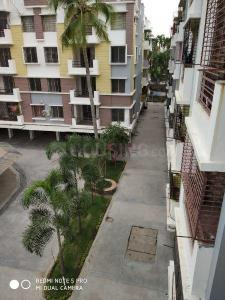 Gallery Cover Image of 1335 Sq.ft 3 BHK Apartment for rent in New Town for 11000