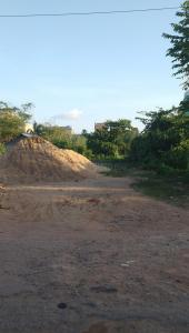 Gallery Cover Image of  Sq.ft Residential Plot for buy in Bramhapur for 9500000