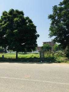 580 Sq.ft Residential Plot for Sale in Sector 75, Faridabad